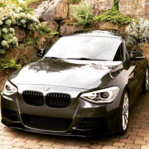 Passend für BMW M135i F20/F21